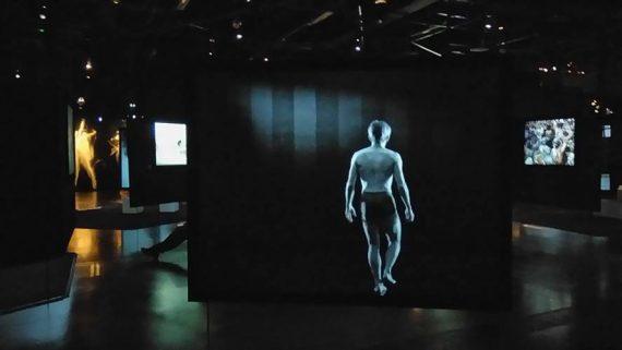 Vue d'ensemble des écrans de l'exposition.