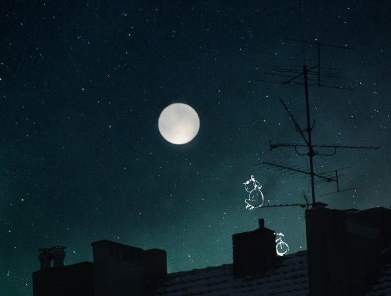 sur les toits du monde
